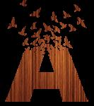 Atrium-Logo-2014_wood-A